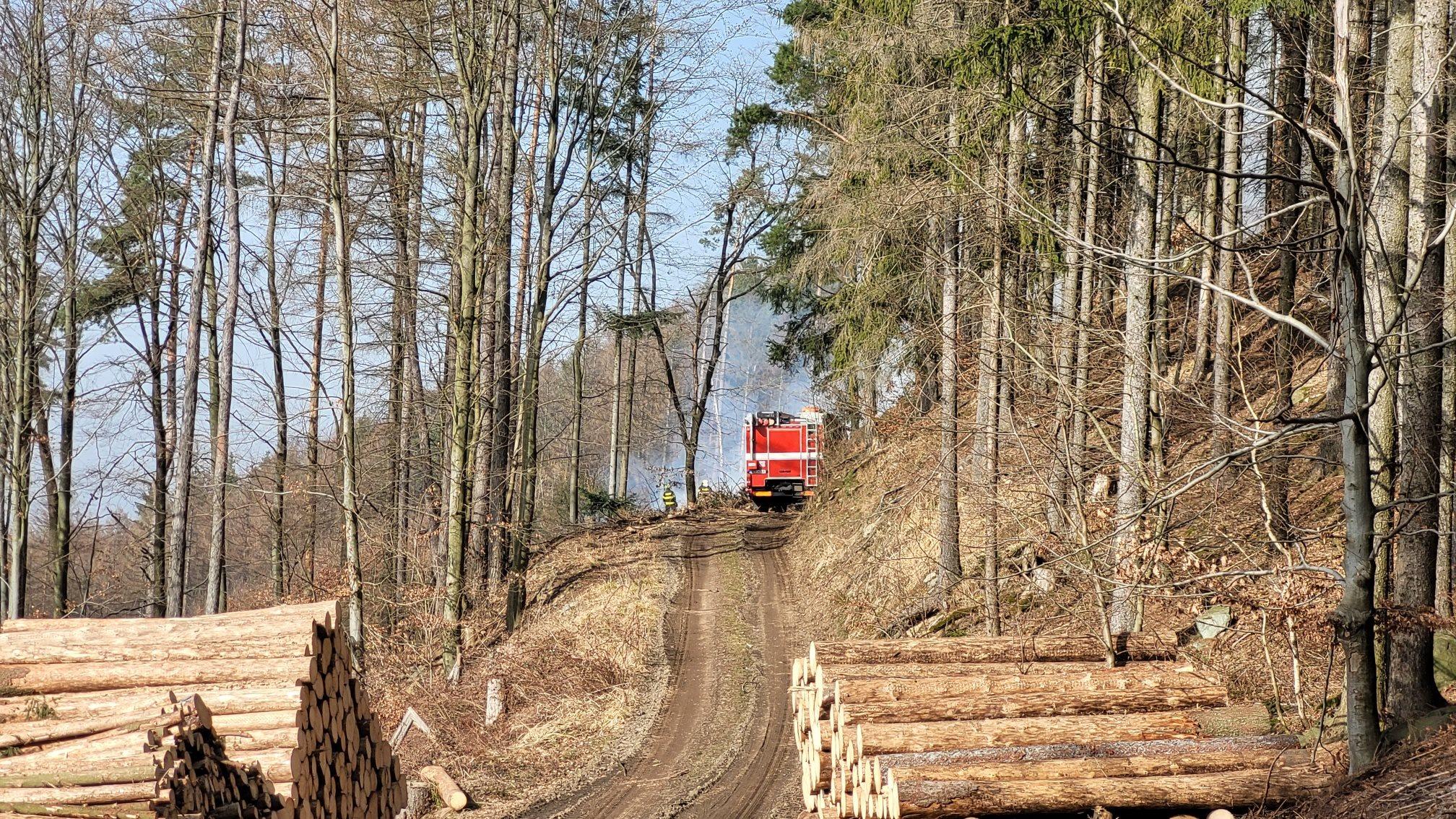 požár lesní porost